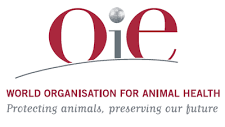 OIE – World Animal Health Information System (WAHIS)